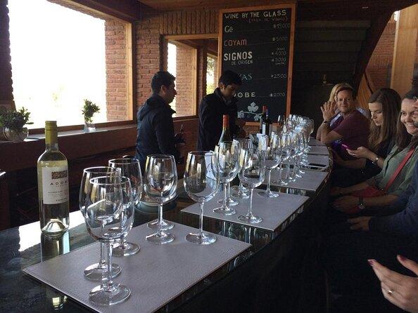 Emiliana Organic Winery