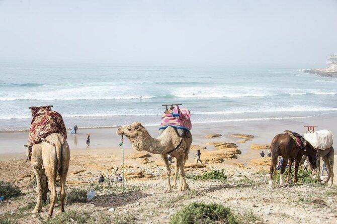 Playa de Taghazout
