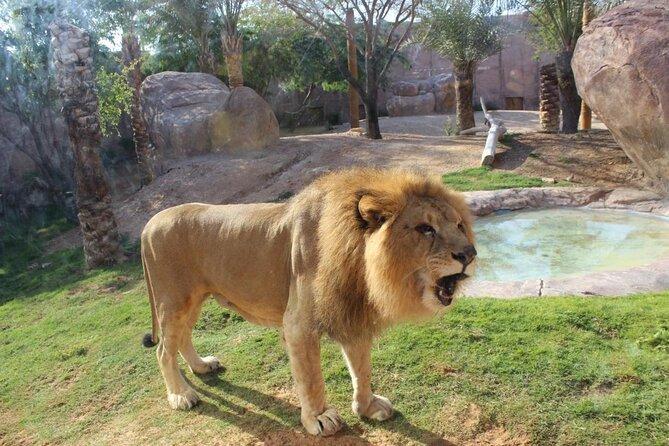 Zoológico de Al Ain