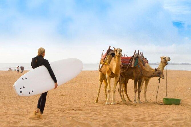 Essaouira Beach (Plage d'Essaouira)