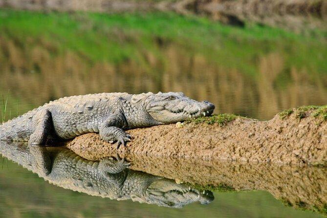 Santuario Nacional de Chambal