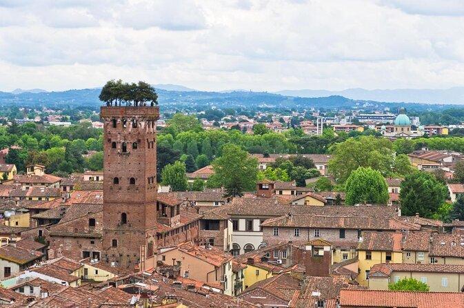 Guinigi Tower (Torre Guinigi)