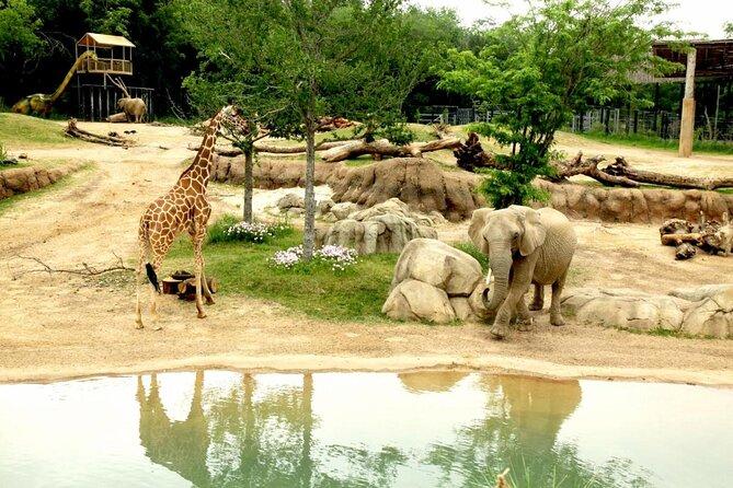 Zoo de Dallas