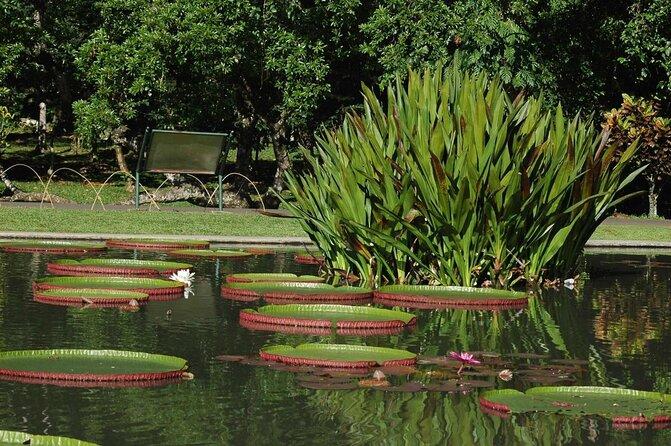 Bogor Botanical Gardens (Kebun Raya Bogor)