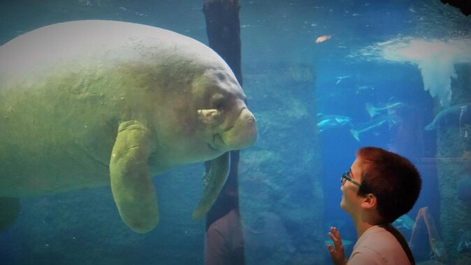 Aquarium du monde de Dallas