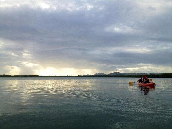 Bioluminescent Bay (Mosquito Bay)