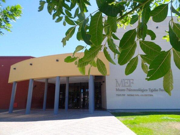 Museum of Paleontology Egidio Feruglio (MEF)