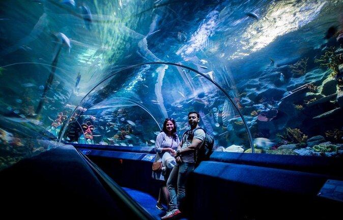 Istanbul SEA LIFE® Aquarium