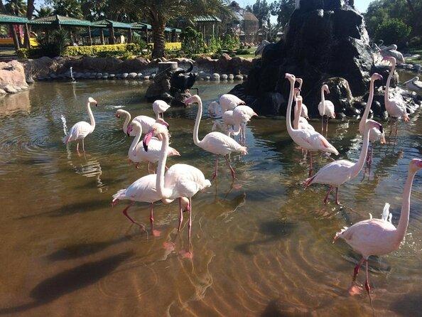 Al Areen Wildlife Park & Reserve