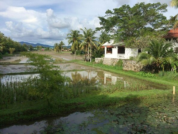 Rice Museum (Laman Padi Langkawi)