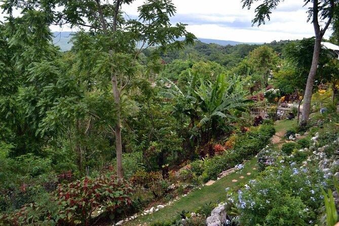 Ahhh...Ras Natango Gallery and Garden