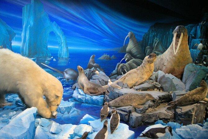 Museum of Natural History (Muséum d'Histoire Naturelle de Suisse)