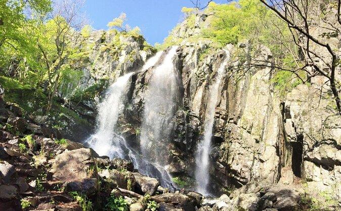 Boyana Wasserfall