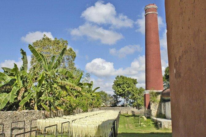 Sotuta de Peón Agave Plantation (Hacienda Sotuta de Peón)