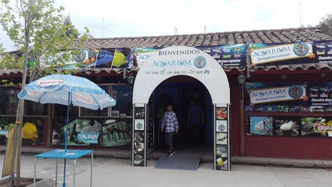 Acquario Aquamundo