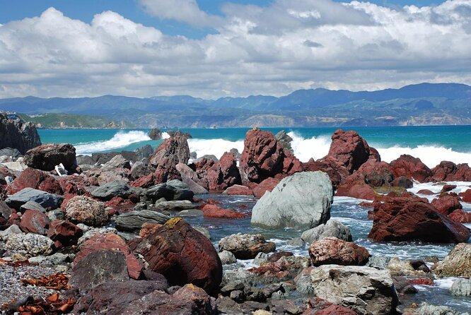 Red Rocks Reserve (Pariwhero)
