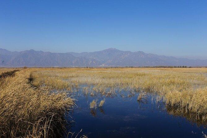 Wild Duck Lake National Wetland Park (Yeyahu)
