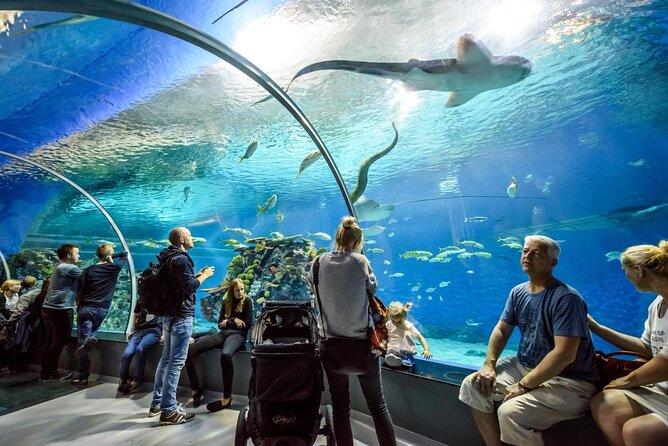 National Aquarium Denmark (Den Blaa Planet)