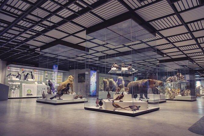 State Darwin Museum