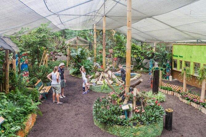 Mindo Butterfly Farm (Mariposas de Mindo)