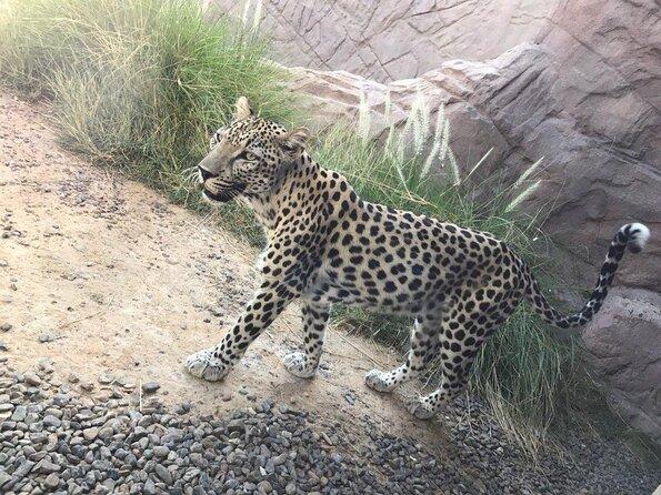 Arabian Wildlife Center
