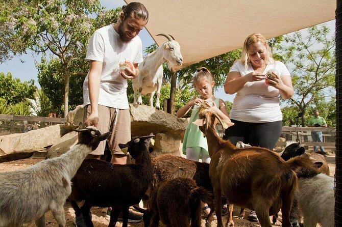 Menorca Zoo (Centre Zoologic Lloc De Menorca)