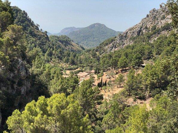 Puig de Galatzo Nature Reserve (La Reserva Puig de Galatzo)