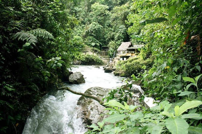 Nambilla Waterfalls (Nambilla Cascadas)