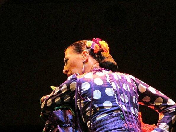Flamenco Dance Museum (Museo del Baile Flamenco)