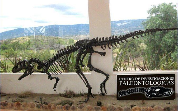 Paleontological Research Center (Centro de Investigaciones Paleonlógicas)