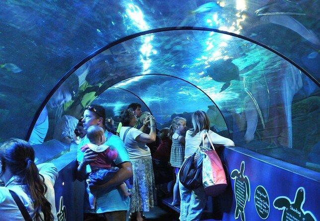 Weymouth SEA LIFE® Adventure Park