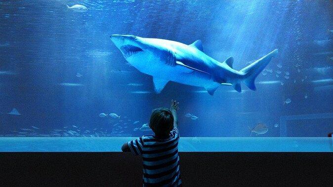 AquaRio Aquarium