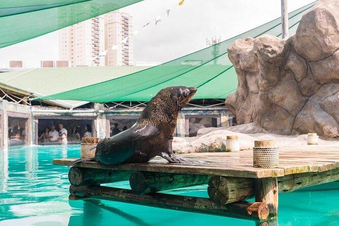 Sao Paulo Aquarium