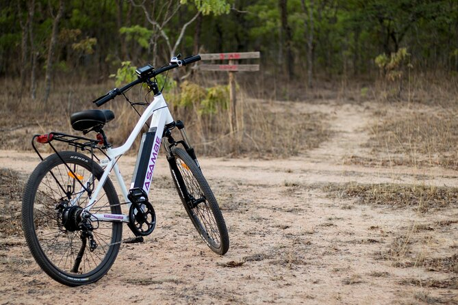 Mukuvisi Woodlands Afternoon Electric Bicycle Tour and Sunset Picnic