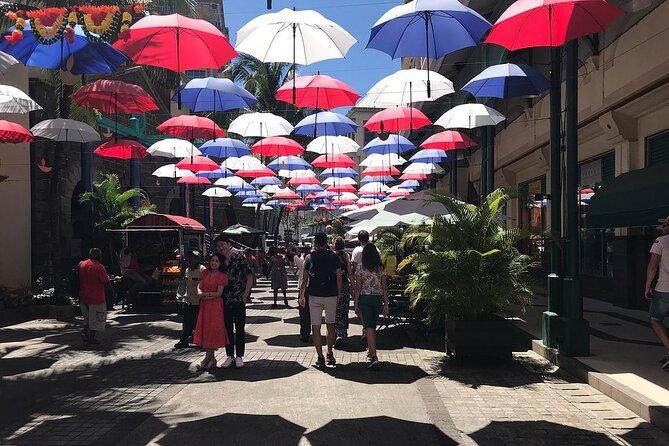 Mauritius : Private north tour