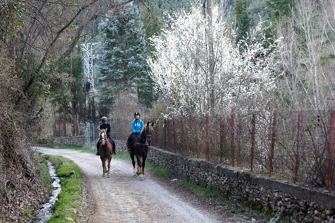 Horseback Riding in Jaca, Huesca, Spain