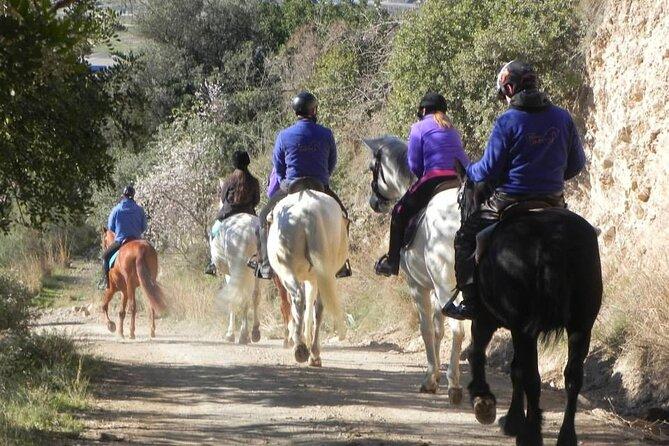 Horseback Riding on Collserola mountain natural park, Barcelona, Spain