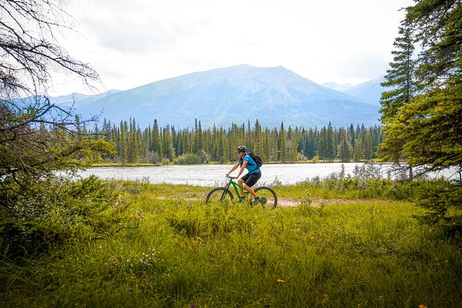1.5 Hours Private Mountain Bike Tour in Jasper National Park