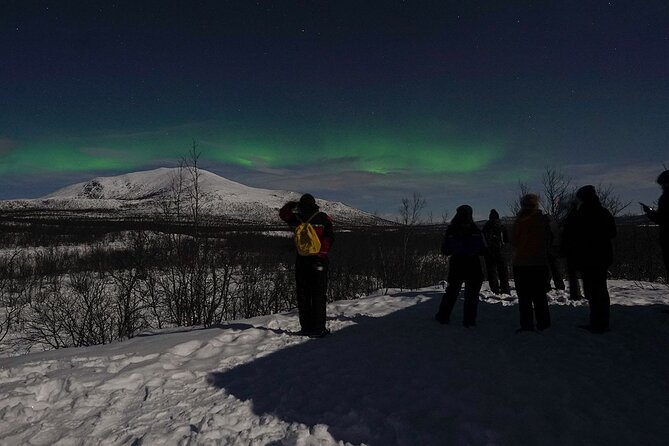 The Longest Northern Lights Tour in Kiruna with Dinner