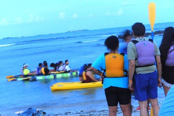 Bioluminescent Bay Night Kayaking & Rainforest Combo Tour