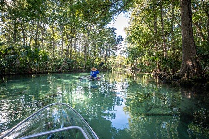 Clear Kayak Tours in Weeki Wachee