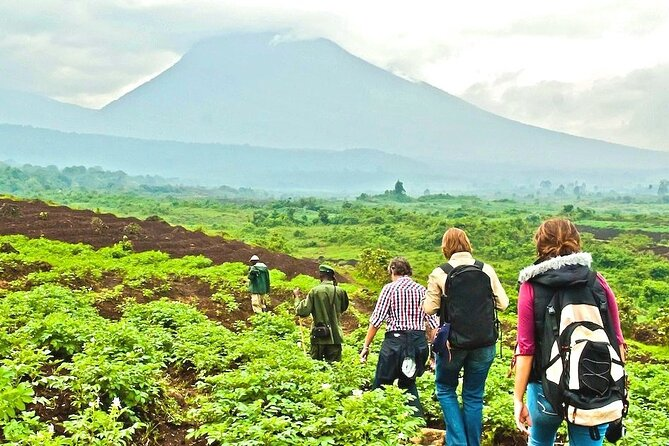 9-Day Private Safari, Hiking Trails and Lake Holiday in Rwanda