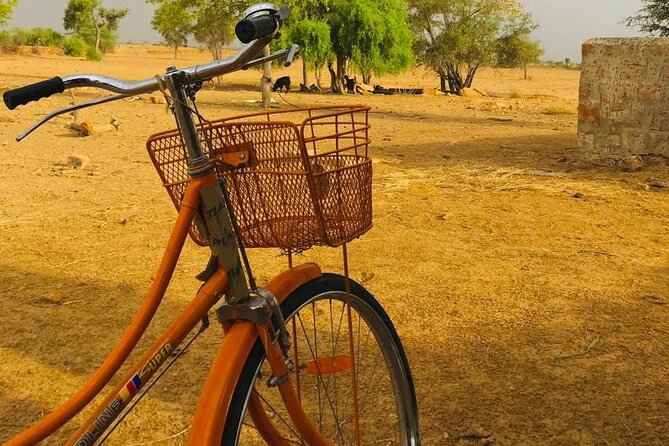 Explore Jaisalmer on a Bicycle Private Tour