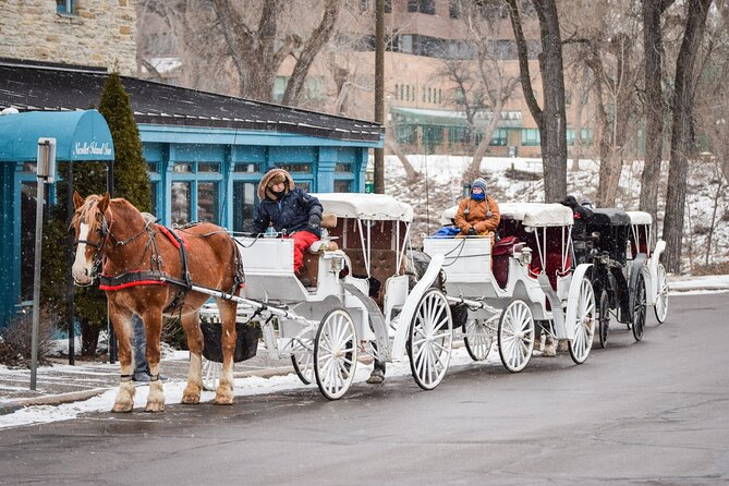 Mississippi Grand Carriage Ride (60 minutes)