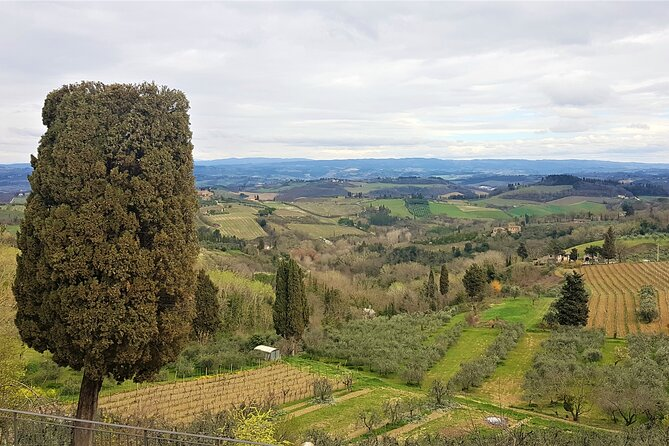Full Day Experience: San Gimignano & Siena Guided Tour from Florence