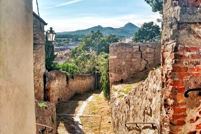 From Padua: The walled town of Monselice