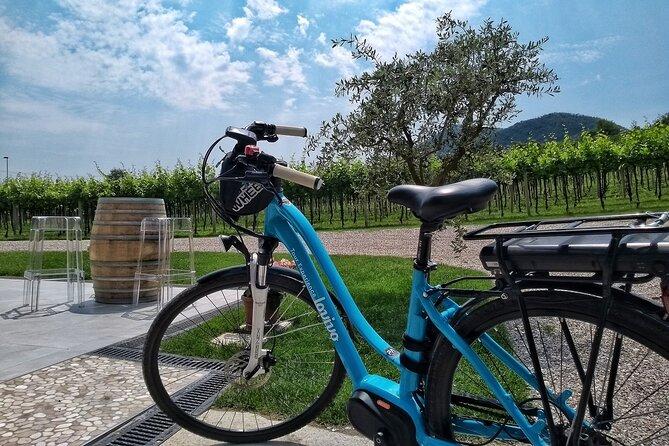 Wine Bike Tour In The Euganean Hills