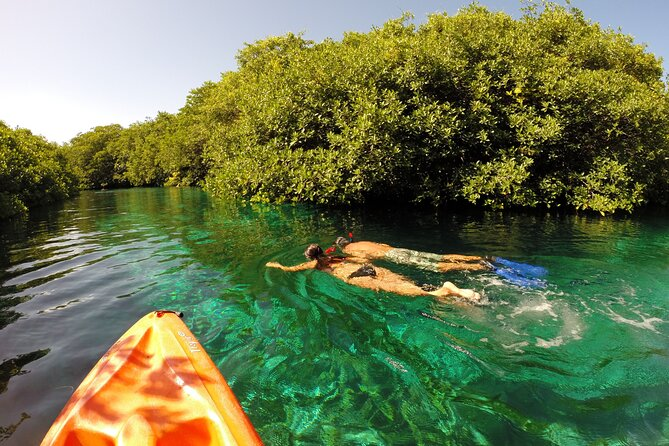 Tulum Reef and Cenote Snorkel Tour