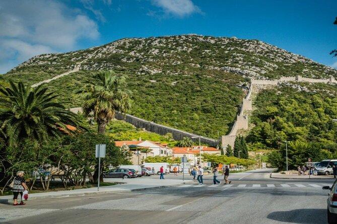 Peljesac Peninsula Wine Tour from Dubrovnik