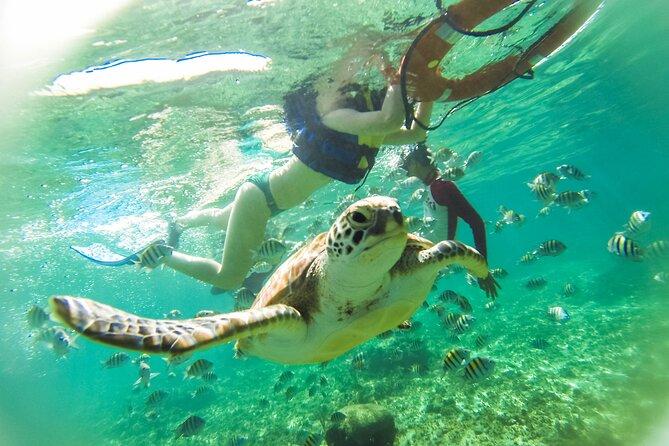 Tulum Reef and Cenote Snorkel Tour